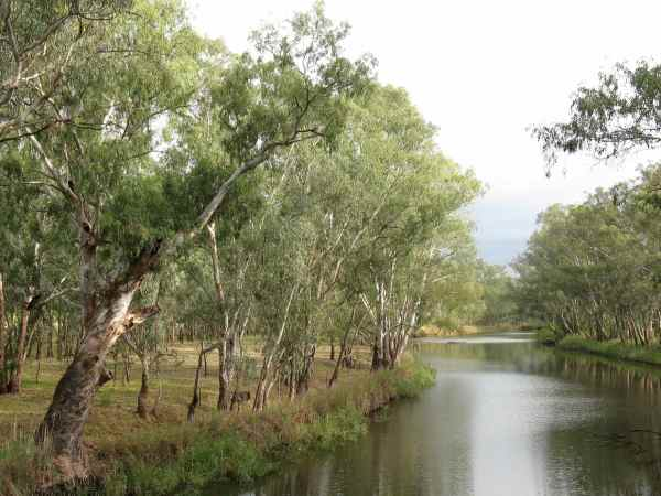 Sunday Creek, near Rutherglen