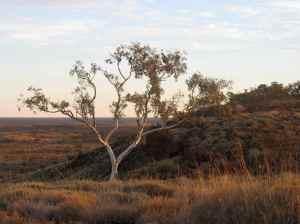 Pilbara, near Newman, WA