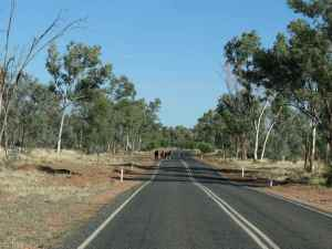 Road to Hermannsburg, Central Australia