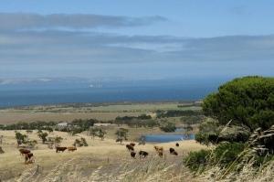 Fleurieu Peninsula, South Australia