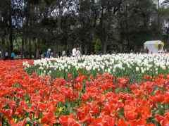 Floriade 2011