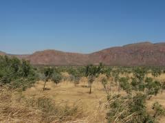 East Kimberley landscape