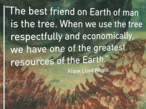 Frank Lloyd Wright tree quote