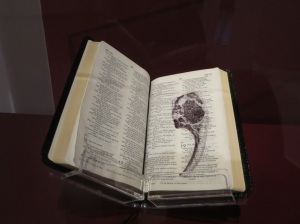 RenatoOraro's Bookwork: NIV Compact Thinline Bible (page 403)