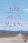 Cassie Flanagan Willanski, Here where we live